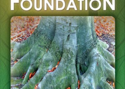 Print_Graphic_Design_A-Good-Foundation_03_007